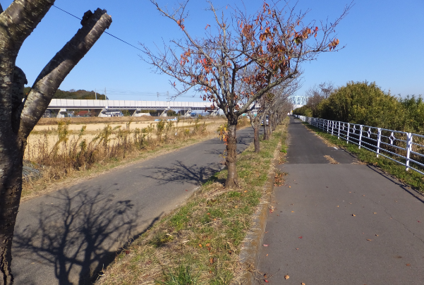 2013-11-25_09h24_09