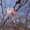 2014-03-30_00h19_49