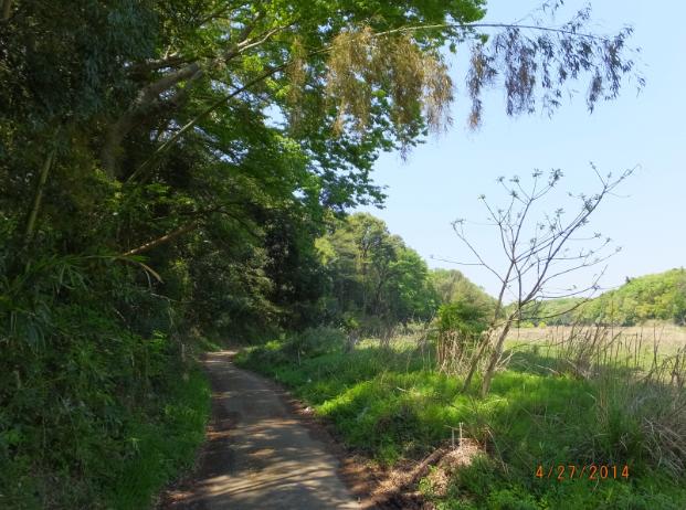 2014-04-29_21h45_55