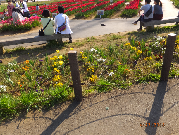 2014-04-29_22h39_35