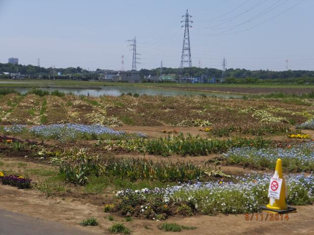 2014-05-14_21h54_24