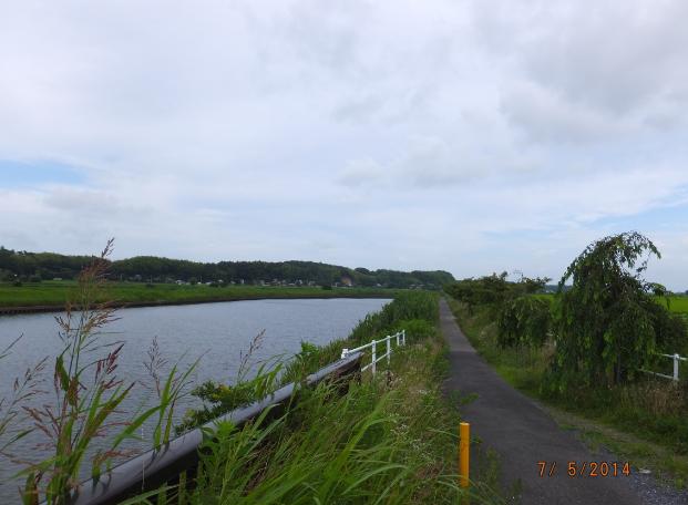 2014-07-08_21h50_41